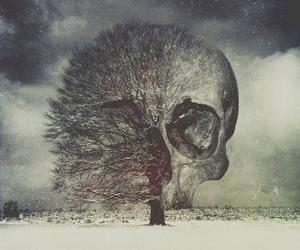 skull, tree, and dark image