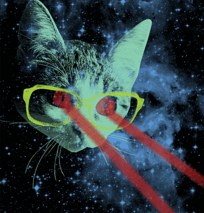 cat, space, and laser image