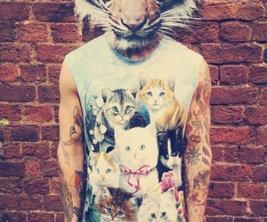 tiger, boy, and cat image