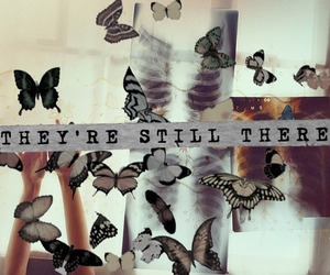 butterfly and quote image