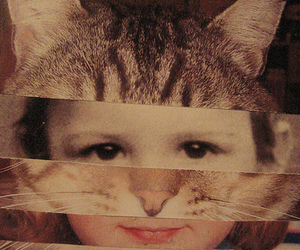 cat, boy, and vintage image