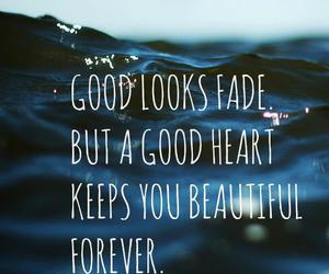 beautiful, photography, and quote image