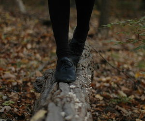 shoes, girl, and autumn image