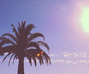 california, clouds, and palm trees image