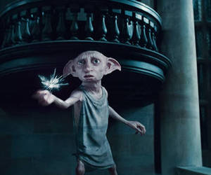 harry potter and dobby image