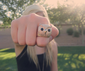 ring and owl image