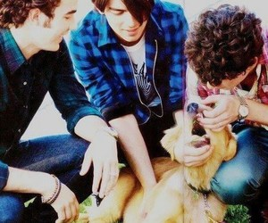 elvis, Joe Jonas, and jonas brothers image