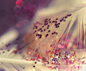 glitter, feather, and pink image