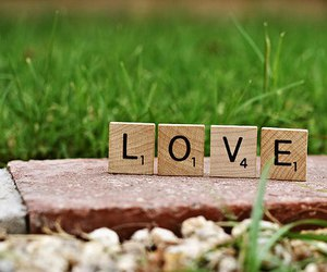 love, photography, and grass image