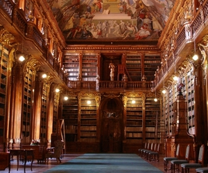library, <3, and book image
