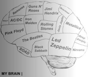 brain, music, and Pink Floyd image