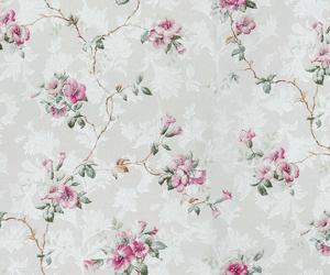 backgrounds image