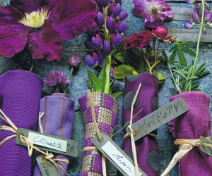 purples image