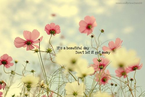 Image about beautiful in My uploads by Sunny on We Heart It