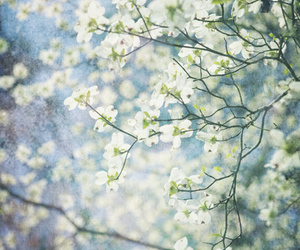 spring, art, and beautiful image