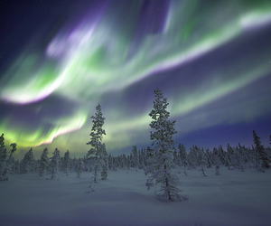 northern lights and sweden image