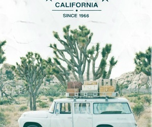 vans, california, and car image