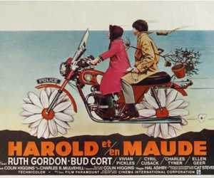 harold and maude and movie image