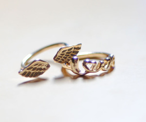 ring, wings, and love image