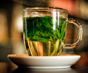 tea, healthy, and mint image