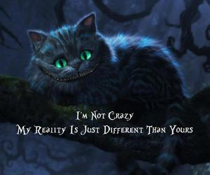 cat, crazy, and alice in wonderland image