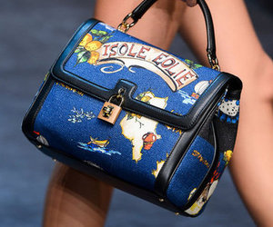 bags and Dolce & Gabbana image