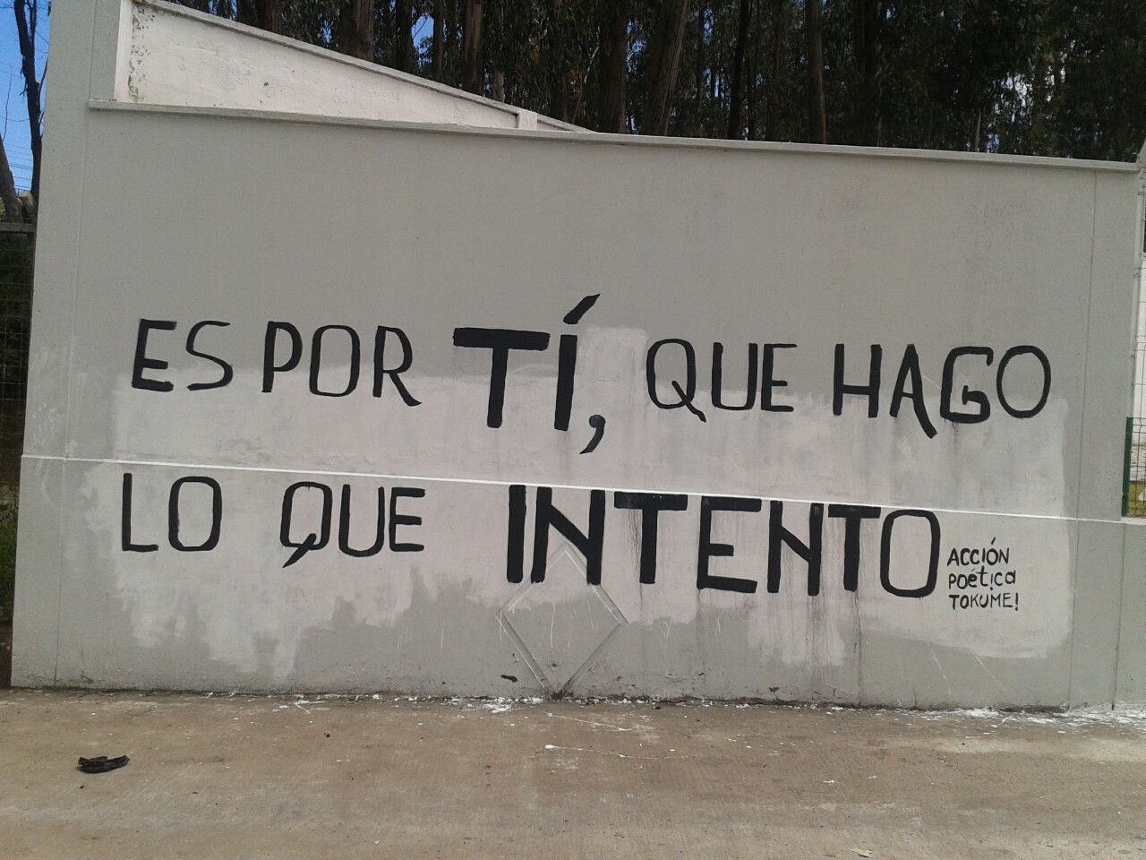 28 images about accion poetica on We Heart It
