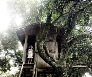 tree house image