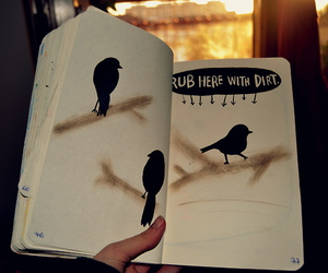 birds, wreck this journal, and WTJ image