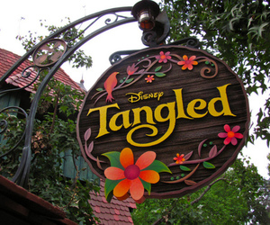 disney, tangled, and photography image