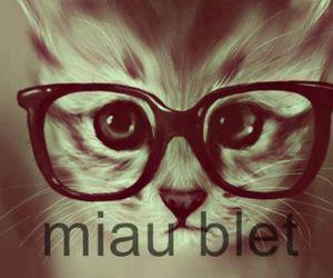 kitty and miau blet image