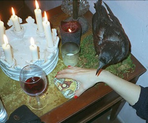 candle, crow, and wine image