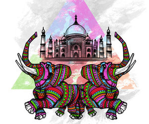 colors and elephant image