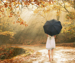 girl, umbrella, and autumn image