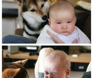 baby, doggy, and cute image