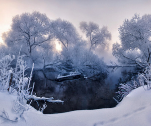 beautiful, blue, and photography image