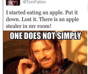 apple, harry potter, and tom felton image