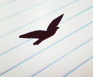 bird, freedom, and vintage image