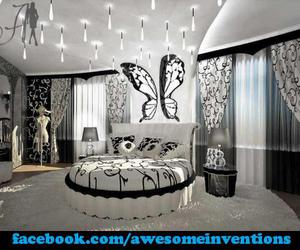 butterfly, room, and white image