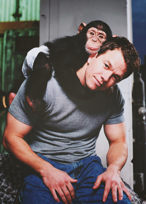 Mark Wahlberg Tumblr Shared By Evelina On We Heart It