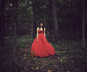 dress, forest, and fairytale image