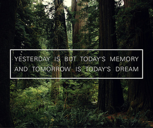 Dream, quote, and memories image