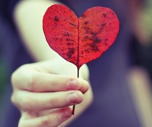 hand, heart, and leaf image