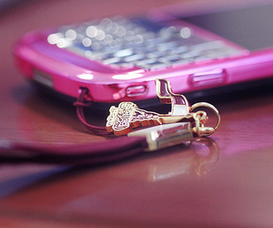 pink and blackberry image