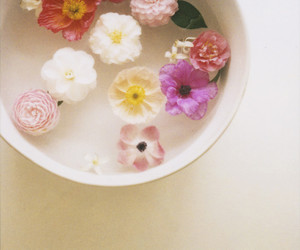 flowers and bowl image