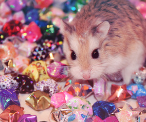 sparkles and cute image