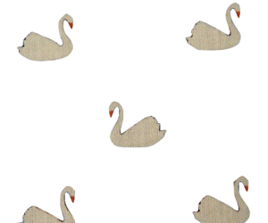 Swan and swans image