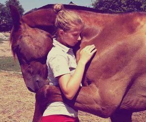 horse, she, and love image