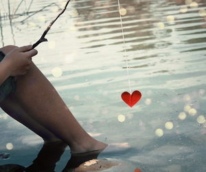 amor, water, and bait image