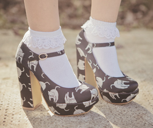 cat, heels, and shoes image